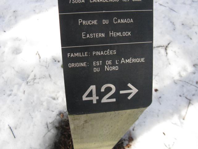 Arboretum Gabriélis, O.B.